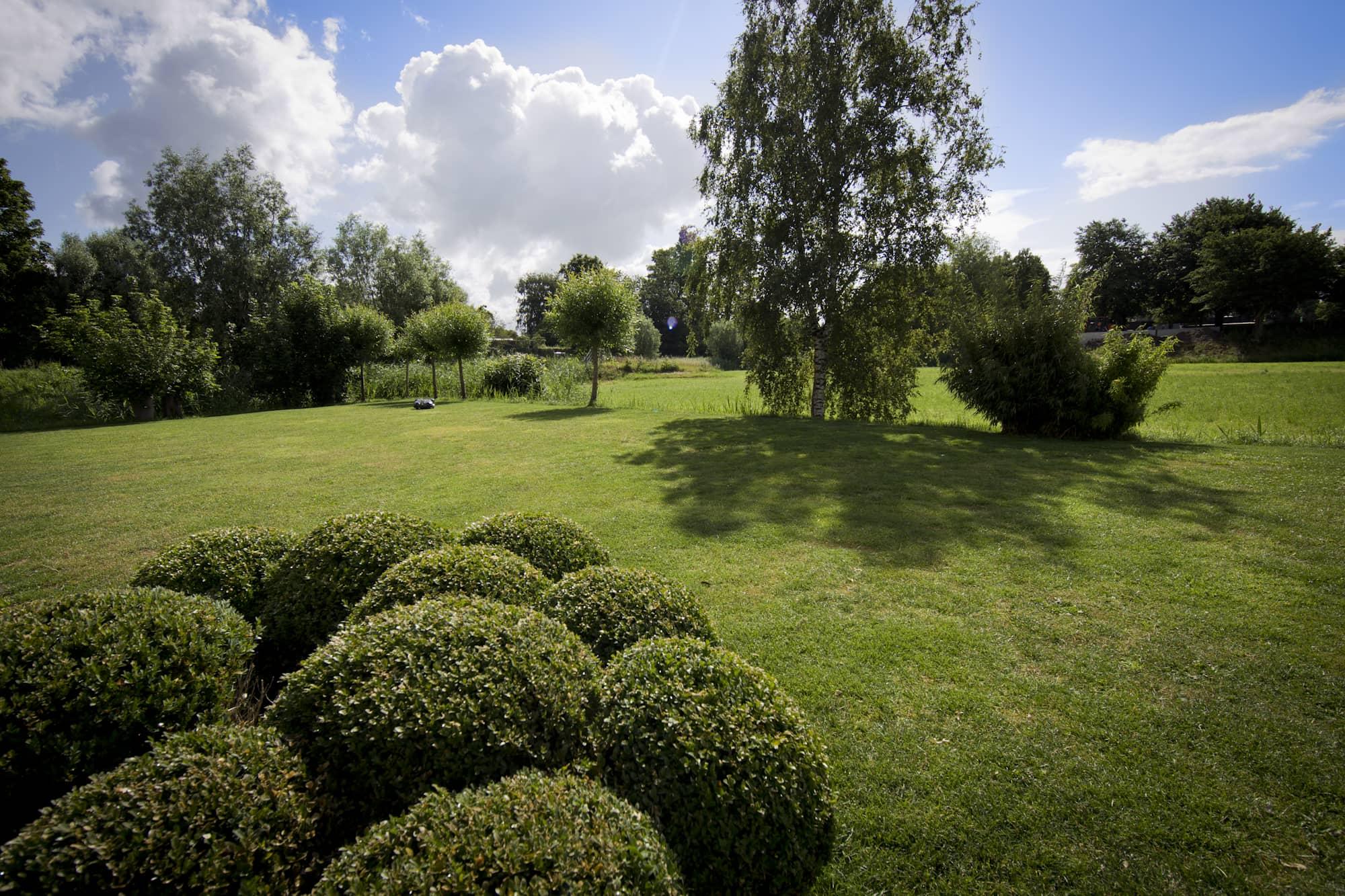 Onderhoud gras en borders
