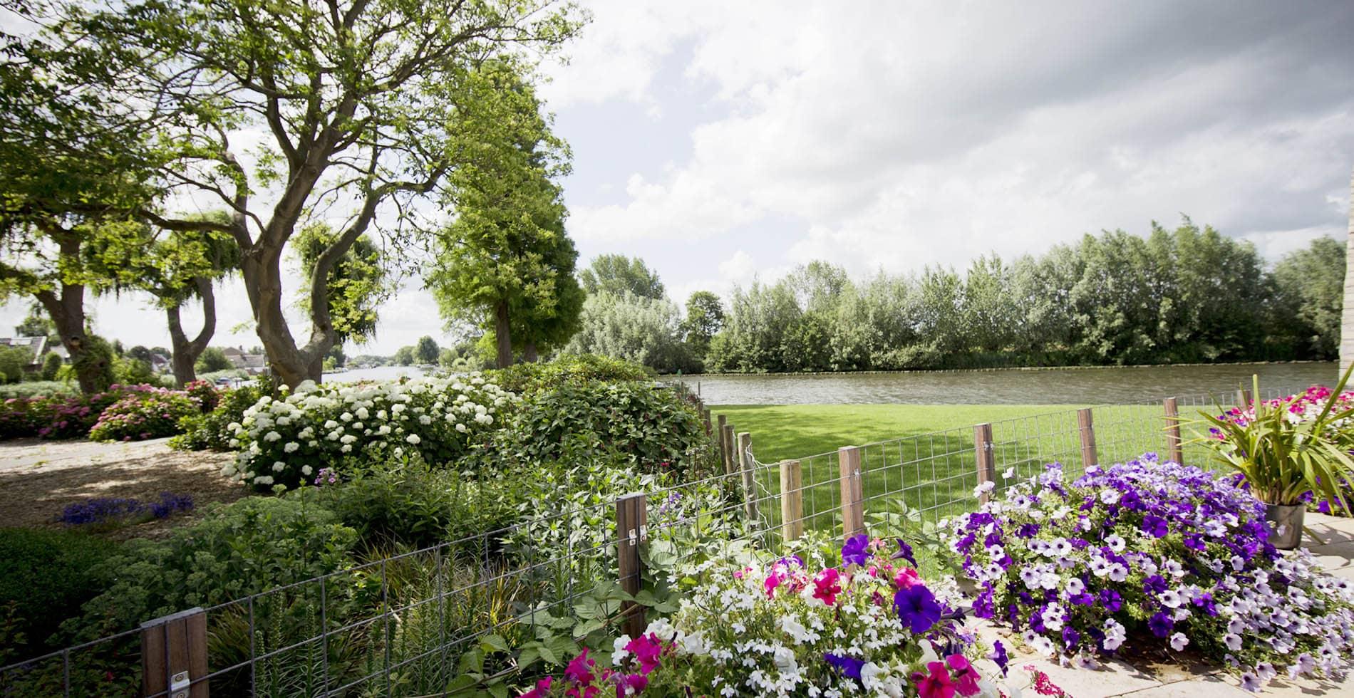 Aanleg / renovatie middelgrote tuin Nederhorst den Berg