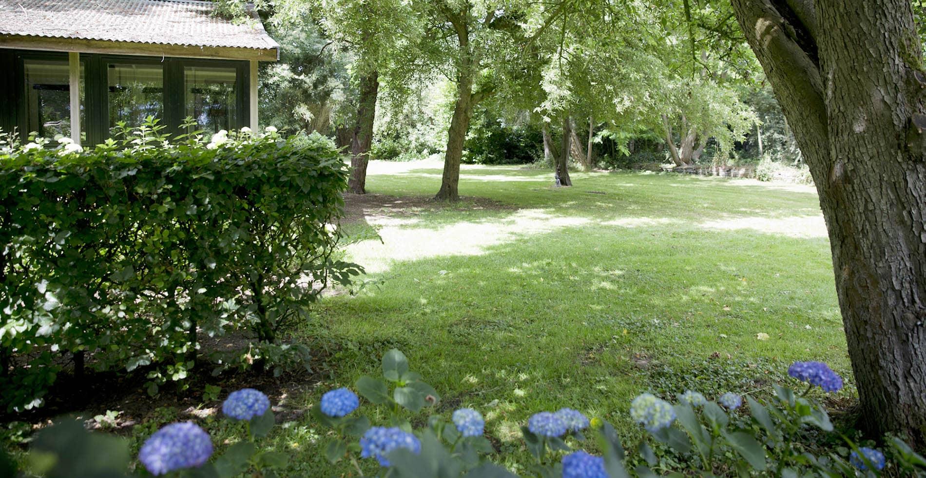 Onderhoud middelgrote tuin Kortenhoef