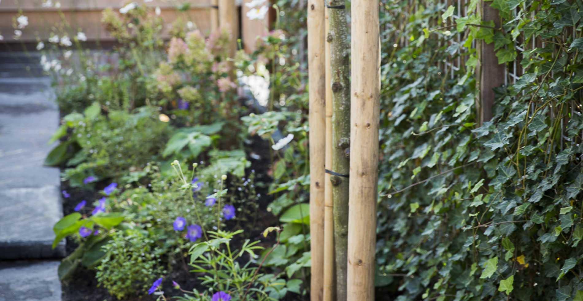 Leuke tuin in Leeuweveld3, Weesp